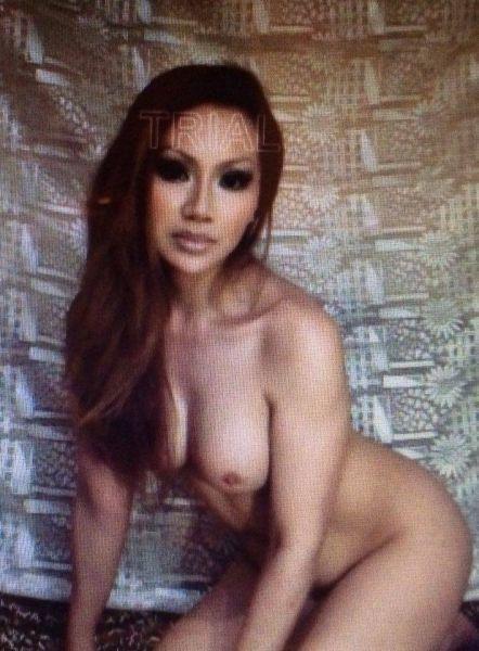 meine begleitung escort erotischer adventskalender für frauen